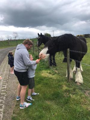 Shane Stewart and his son Ollie feeding the horses