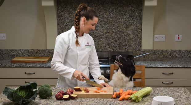 Right recipe: Joanne Tohill from Barkin Bistro, prepares food with one of her dogs