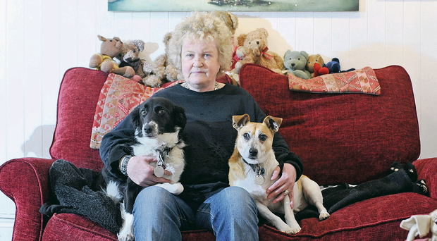 Brenda Fricker at home with her dogs