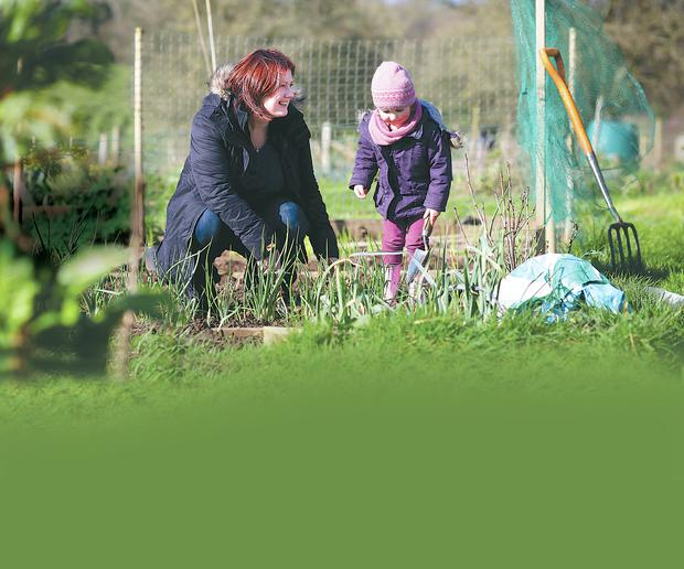 Planting a seed: clockwise from top, Linda Stewart and daughter Neve