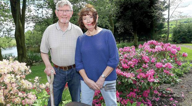 Flower power: Hilary and Jim Rafferty in the garden of their Ballymena home