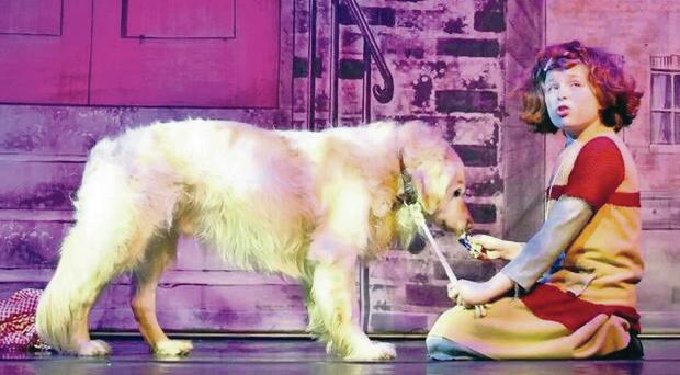 Star quality: Holly McConville on stage in Annie