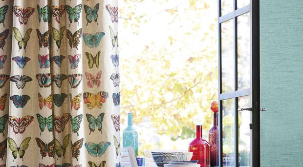 Papilio botanically-drawn butterflies, £56 per metre, Amazilia Collection, Harlequin