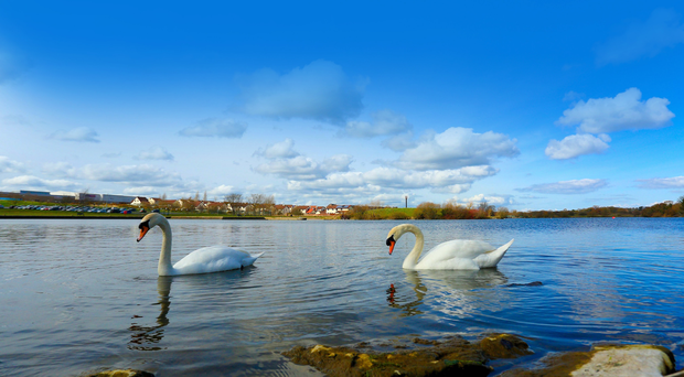 Special place: Craigavon has been voted the most desirable place to live in Northern Ireland