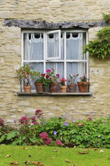 Home Front: A good garden can add value to your house and make it sell quicker, according to Phil Spencer