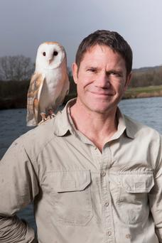 Wise owl: Steve Backshall with one of nature's nocturnal friends