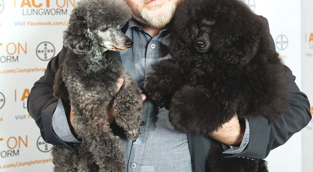 Animal lover Bill Bailey