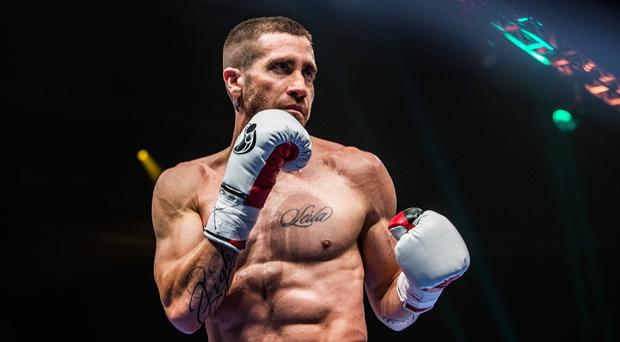 Boxing clever: Jake Gyllenhaal as the light-heavyweight champion Billy Hope in the movie Southpaw