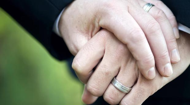 Divisive issue: Alliance wants all its candidates to back same-sex marriage