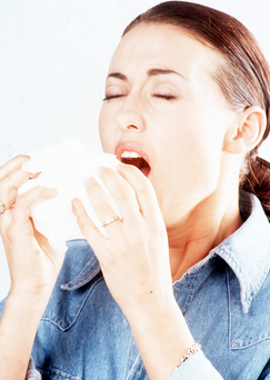 Dreaded bug: colds are common at the moment