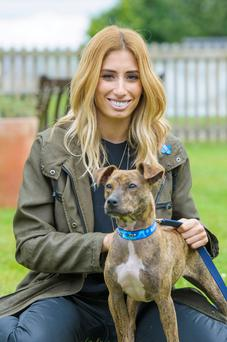Stacey Solomon is working with charity Blue Cross