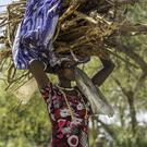 In harm's way: a woman carrying wood so she can make a fire