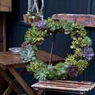 Decorations: Emma Hardy's book offers tips to assemble gorgeous Christmas wreaths