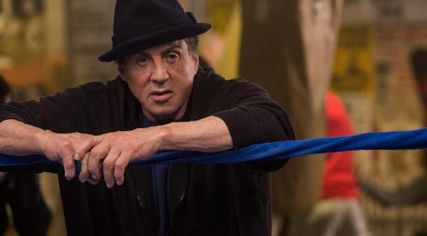 Boxing clever: Sylvester Stallone