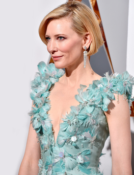 Cate Blanchett at the Oscars last week