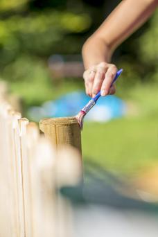 Garden chic: painting is a great way to spruce up your fences