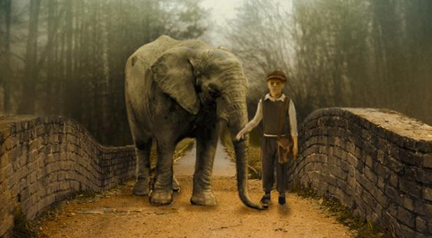 A poster for Zoo, a story told through the eyes of 12-year-old Tom,aided by his friends, as he fights to save the animal