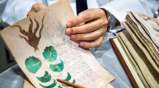 Key literature: the precious document containing mysterious writing and strange drawings of unidentified plants, the night sky and naked women