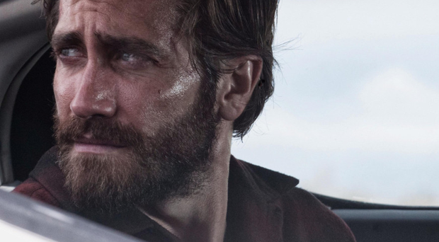 Powerhouse act: Jake Gyllenhaal in Nocturnal Animals