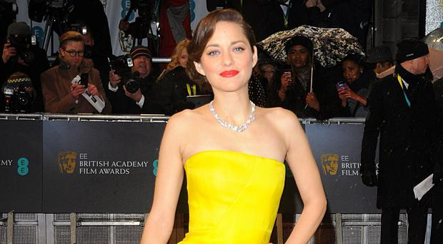 Leading lady: Marion Cotillard stars in new movie, Assassin's Creed