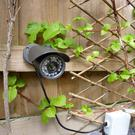Garden Wildlife Camera, £139.99, www.rspb.org.uk