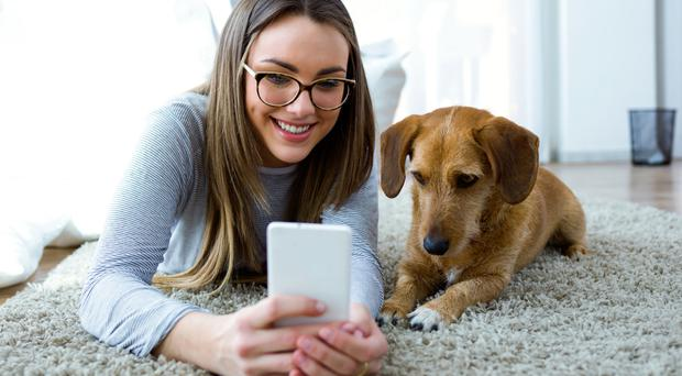 Doggone it: there are a whole host of smartphone apps and services dedicated to woman's best friend