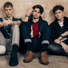 Busy boys: The Vamps