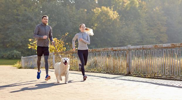 Good approach: taking your dog for a walk or a run is a great way to help you stay fit