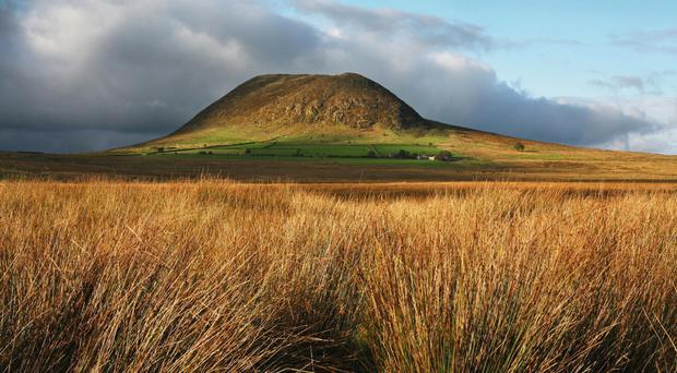 Wilderness: Slemish, where St Patrick is believed to have tended cattle