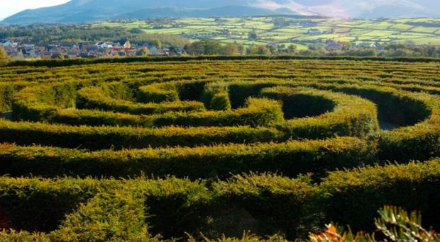 Puzzling time: just like a maze, in life most of us don't know what's around the corner
