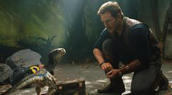 Another world: Chris Pratt and pal