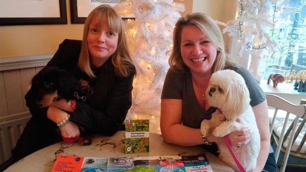 Pet pals: Heidi and Jo-Anne with their dogs in The Lamppost Cafe in Belfast