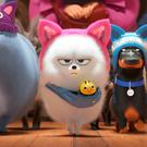 Animal magic: The Secret Life of Pets 2