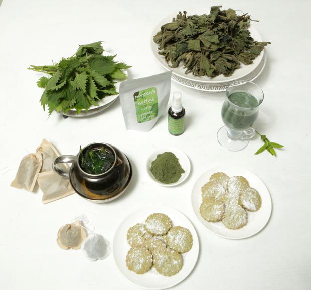 Products including biscuits, tea, smoothies and hair tonic, made from fresh and dried nettles