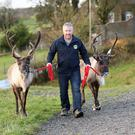 Philip Brown with his Scandinavian reindeer