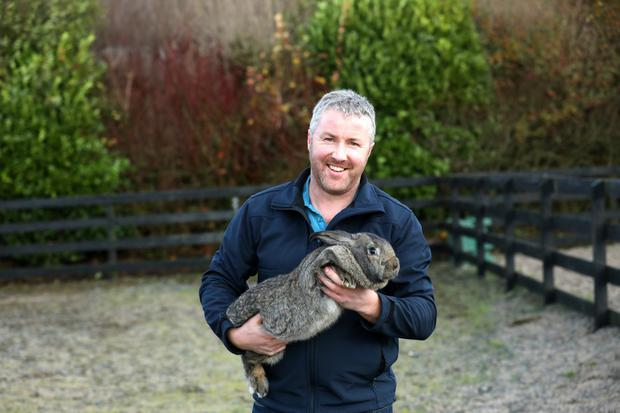 With a rabbit