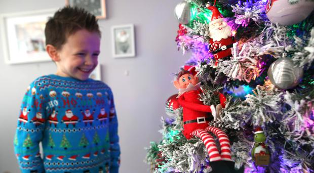 Oscar and his family having fun looking at their Elf on the Christmas tree