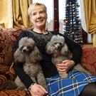Prized possessions: Janet Gray at home with her two dogs, Hollie and Harvey