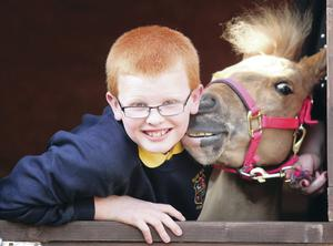 Stable mates: Bradley Hayes  at home in Dundonald with  Summer;