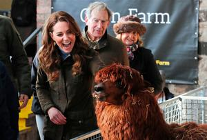 Kate's visit to the Ark Open Farm in Newtownards earlier this month