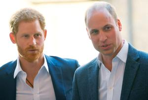 Brotherly rift: Prince Harry (left) and Prince William fell out