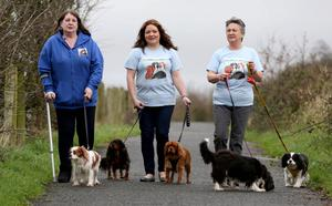 Fun time: Olive Hughes, Catherine and Barbara Hilditch take some of the dogs out for exercise