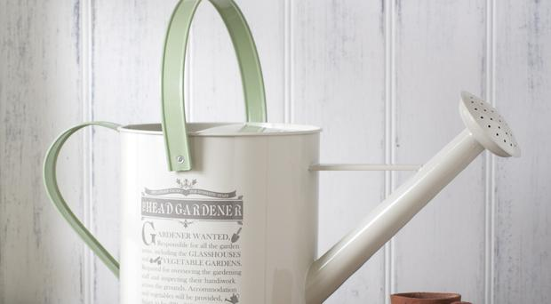 Smart garden buys - watering can £10, tch.net