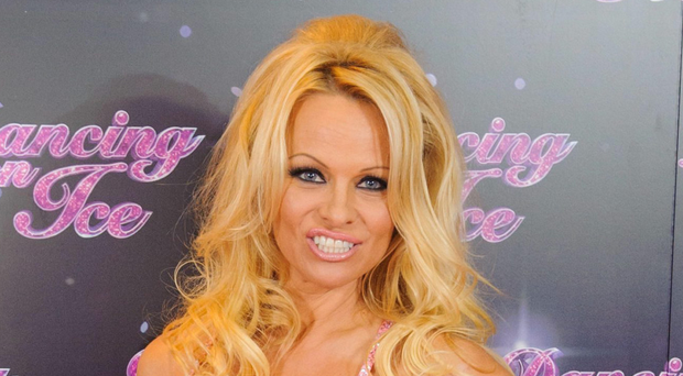 STAR QUALITY: Pamela Anderson is a big supporter of animal rights