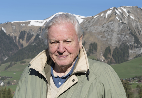 MOUNTAIN MAN: Sir David Attenborough is back with Planet Earth II