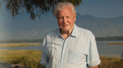 Sir David Attenborough in new series Dynasties