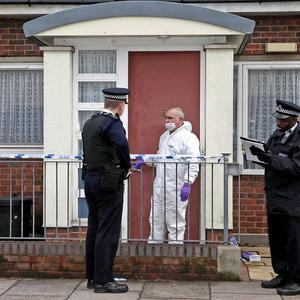 Hainton Close, east London, where former black cab driver Michael Fitzgibbon stabbed his 100-year-old mother in the neck