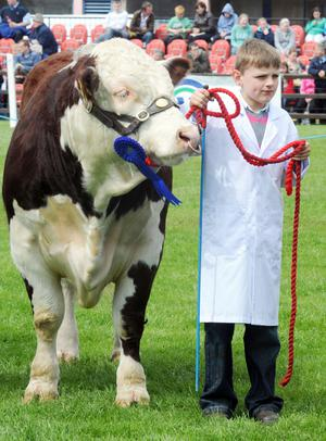 A young farmer shows off his prize bull