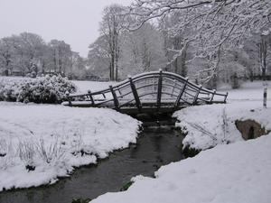 Snow in Lurgan Park. By Margaret Taylor