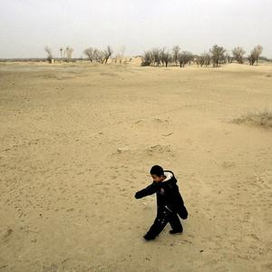 The amount of land turning into desert in China has fallen, according to officials (AP)